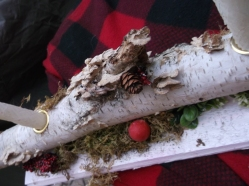 birch, plaid